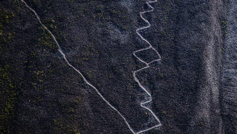 Bouganville Tracks in Darkness - Oli Oldroyd