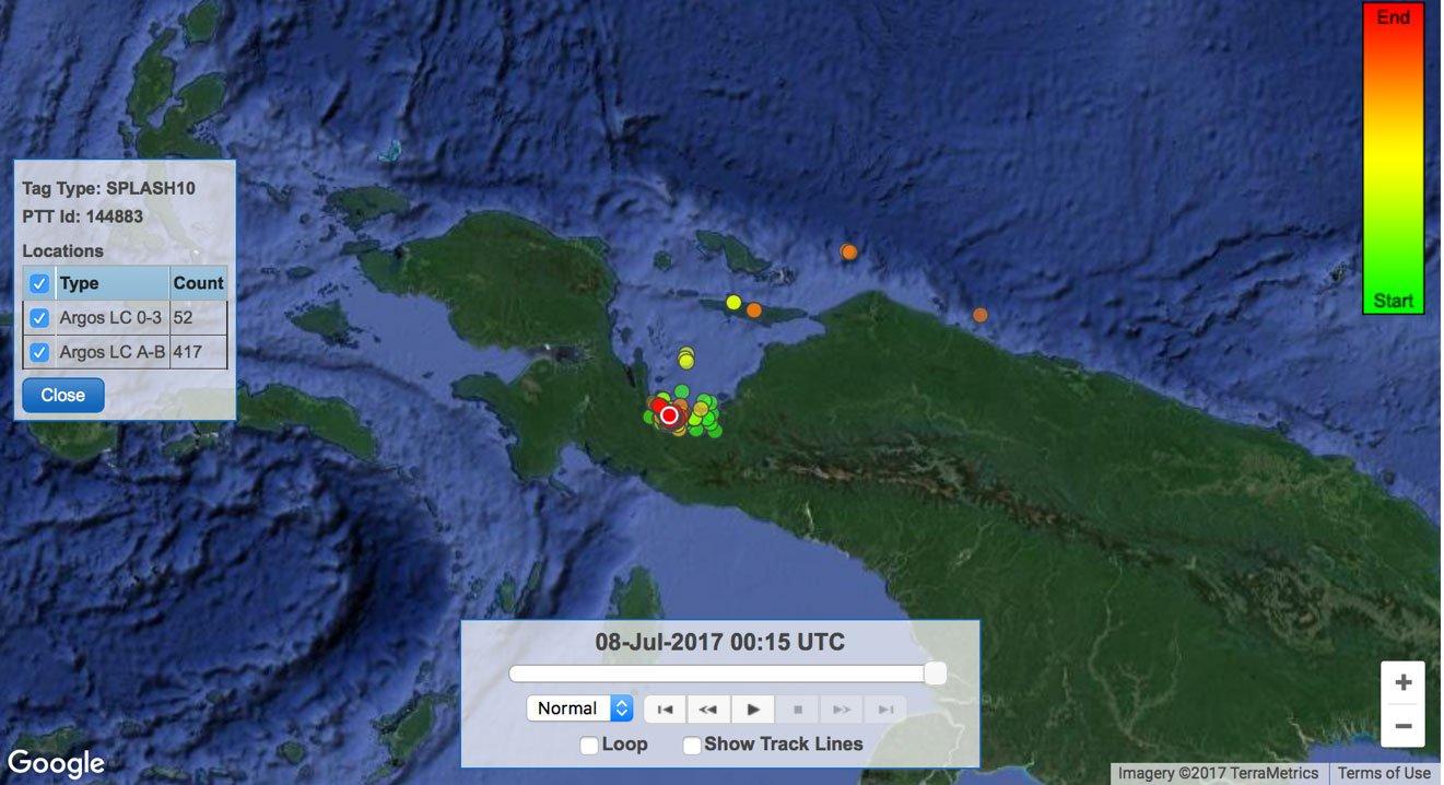 CI-Sharky-McSharkface-Map