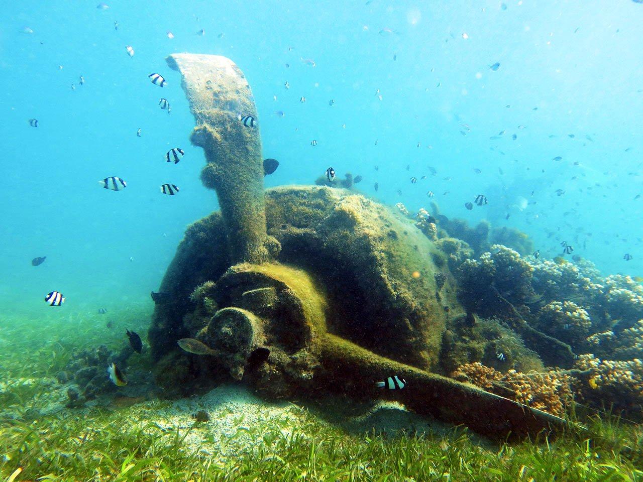 Japanese Zero Wreck Louisiades Archipelago