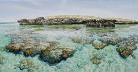Larry Mitchell Pilbara Island