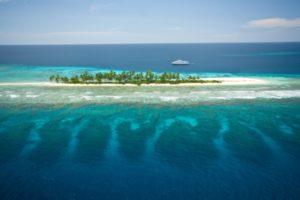 Papua New Guinea Reef