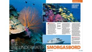 Rowley Shoals Nigel Marsh Underwater Photographer