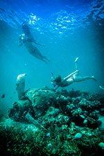 Louisiades Archipelago Zero Dive Wreck - TRUE NORTH