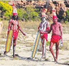 Tribe - Kimberley's