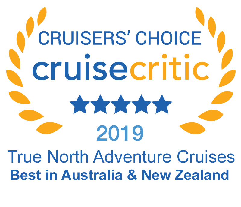 cruise critic award 2019 logo small