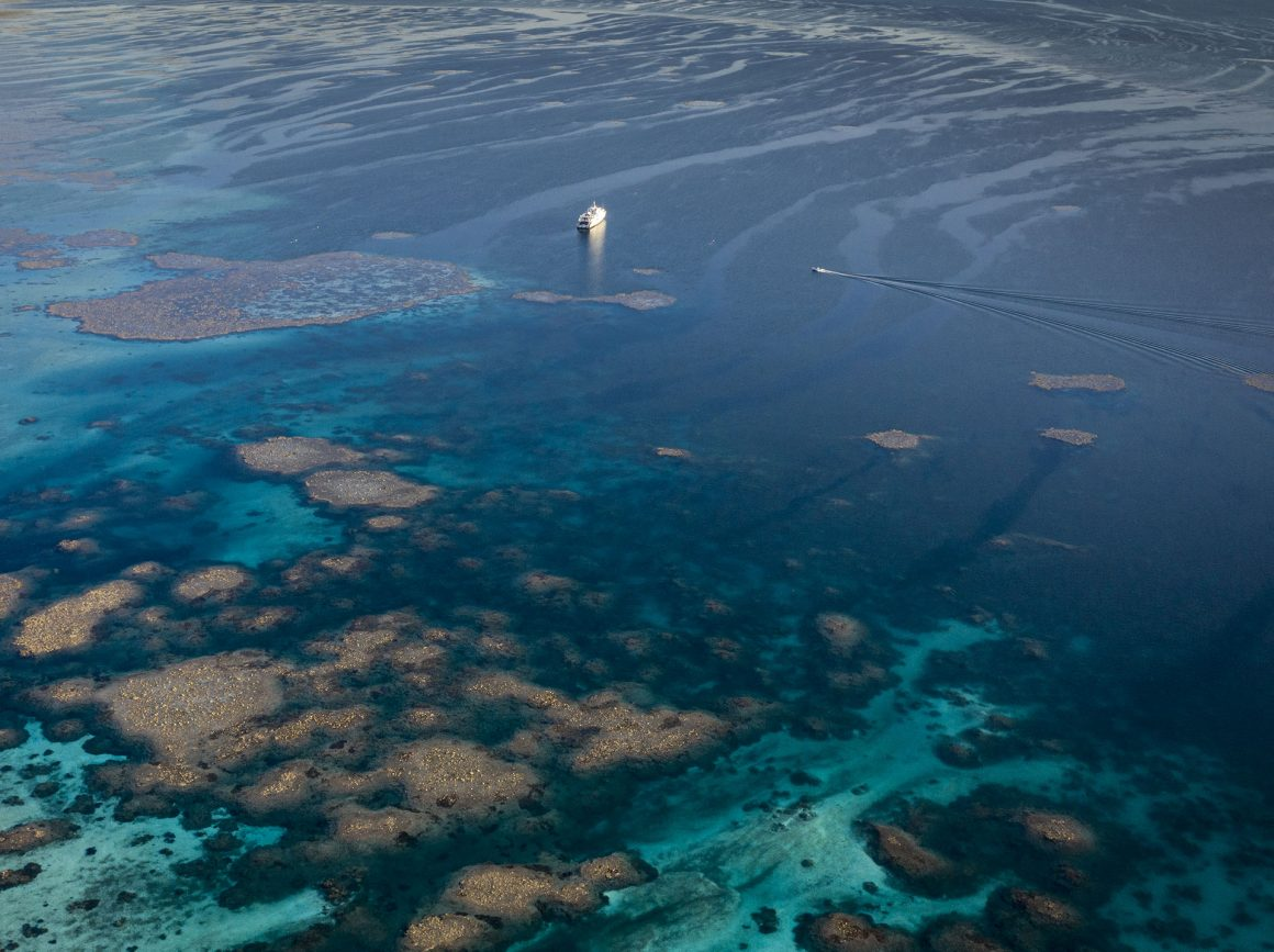 aerial view of the wonderful rowley shoals